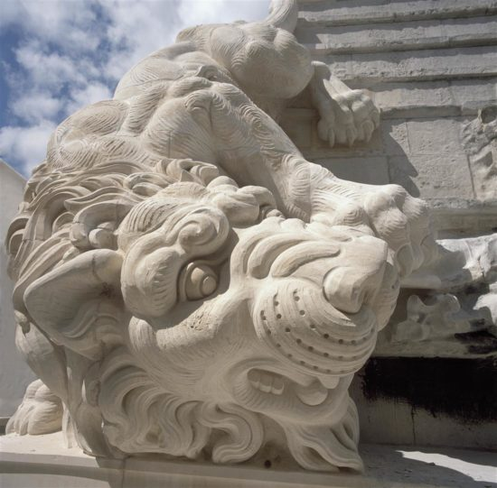 A close up of one of the lions